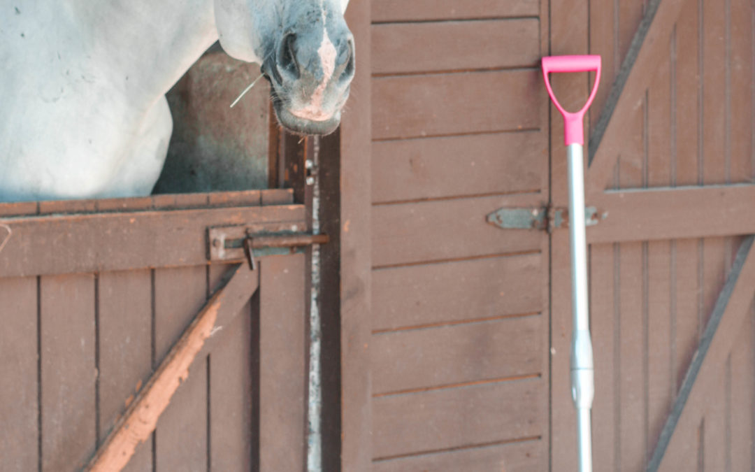 Review: Shavings Fork With Telescopic Shaft by V-Plast
